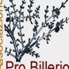 Pro Billerio