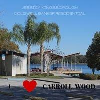 Carrollwood Area Real Estate Market
