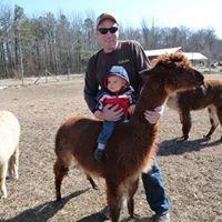 Meadows Edge Alpaca Ranch