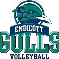 Endicott College Men's Volleyball