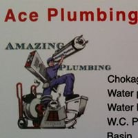 ACE Plumbing & Renovation