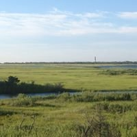 Sedge Islands State Wildlife Management Area