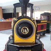 Southridge Mall Family Train