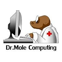Dr Mole Computing