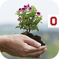 Hardin County OSU Extension Master Gardeners