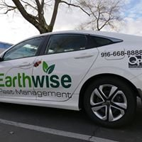 Earthwise Pest Management