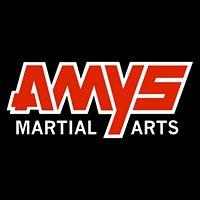 AMYS Martial Arts - Orem