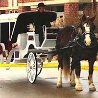 Clip Clop Wagon Rides & Carriage Service