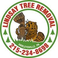 Lindsay Tree Removal
