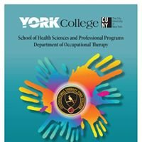 York College CUNY Occupational Therapy BS/MS Program