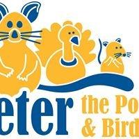 Peter the Possum & Bird Man - Brisbane