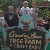 Country Lane Tree Farm