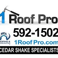 1 Roof Pro