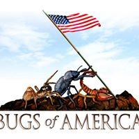 Bugs of America
