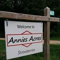 Annie's Acres Strawberries