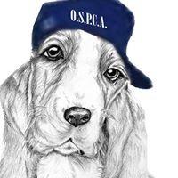 Ontario SPCA, Orillia Branch  Youth Program