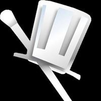 Net Magik Pros Web Design