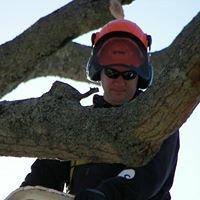 Pamlico Tree Care, LLC