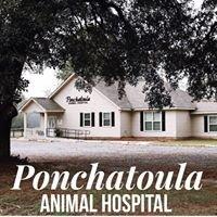 Ponchatoula Animal Hospital
