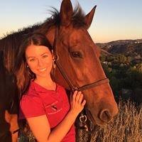 Vital Equine Holistic Veterinary Medicine