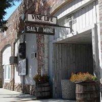 Vine Life Ministries