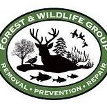 Forest and Wildlife Group