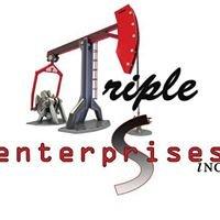 Triple S Enterprises Inc.