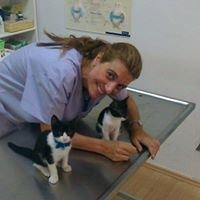 Κτηνιατρείο - Ιατρείο μικρών ζώων Νίκη Θάνου