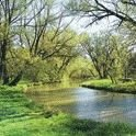 Newmarket Environmental Advisory Committee