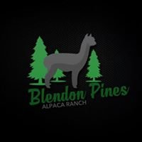 Blendon Pines Alpaca Ranch