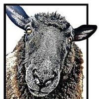 Black Sheep Catering LLC