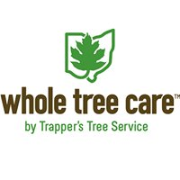 Whole Tree Care by Trappers Tree Service Columbus Ohio