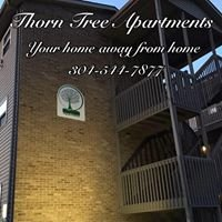 Thorn Tree Apartments