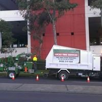 Lucas Tree Services