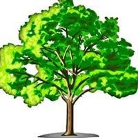 Groundy's Tree Service