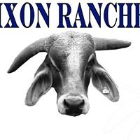 Dixon Ranches - Brahman & Braford Cattle