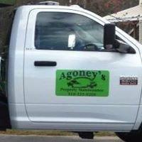 Agoney's Property Maintenance
