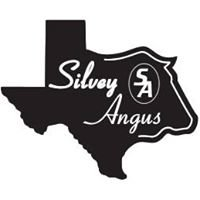 Silvey Angus Ranch