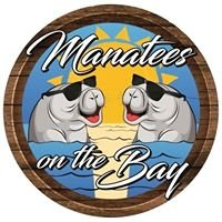 Manatees on the Bay