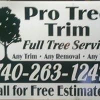 Pro Tree Trim
