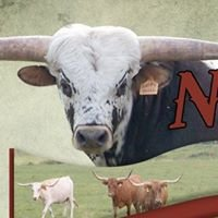 Nel-Tam Longhorns
