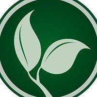 Rosetree Consulting LLC