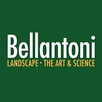 Bellantoni Landscape