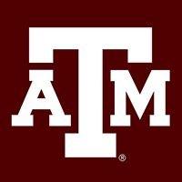 Texas A&M NSF REU Undergraduate Research Program in Biochemistry