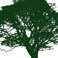 Old Oak Environmental Restoration