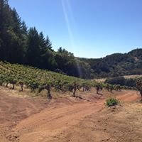 Mayacamas Vineyards