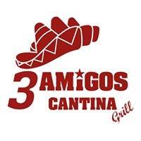 Amigos Cantina Grill