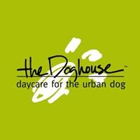 The Doghouse.  Daycare for the Urban Dog