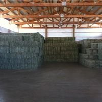Premium Quality Hay & Feed