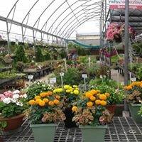 AGRI FLORA Garden centre